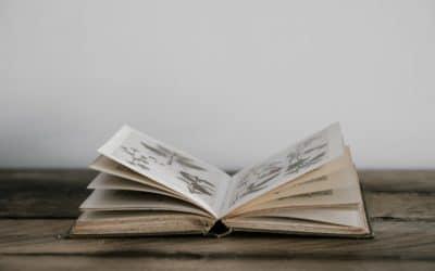 """Réponse à la """"lettre ouverte"""" de plusieurs collectifs anti-dépistage"""