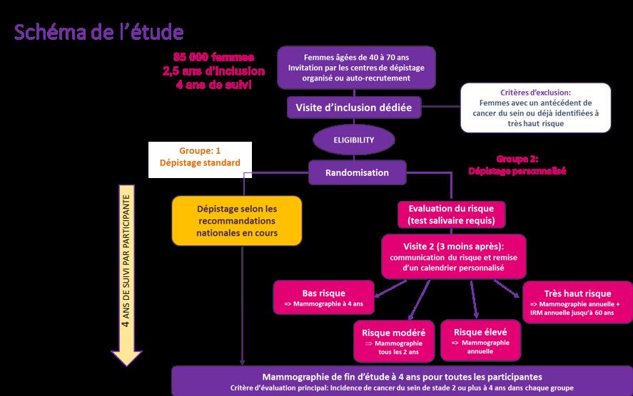 Schéma d'étude MyPeBS